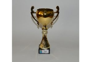 Puchar APIICIS (Association of Portuguese Inventor's Innovator's & Creatives
