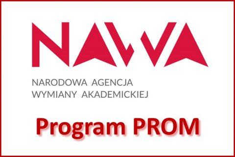 Program PROM Narodowej Agencji Wymiany Akademickiej