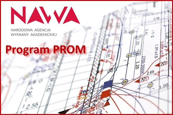 NAWA - PROM: seminarium naukowe